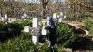 cmentarz N-6